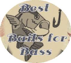 Best bait for bass