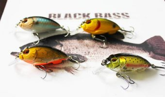 Best Bass Fishing Lures for Summer