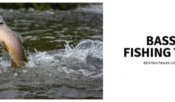 Coldwater Bass Fishing Secrets
